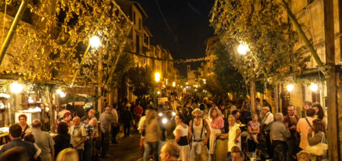Work Camp at Wine&Grape Festival of Zagarolo, Rome – Volunteer Programme